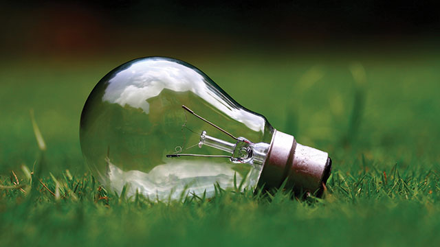 A light bulb lying in the grass. Replacing old light bulbs with energy efficient ones can help reduce polution and save money.