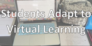 Students adapt to virtual learning